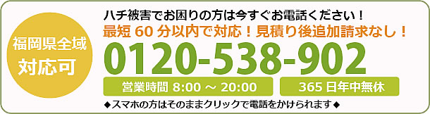 福岡県蜂駆除・巣の撤去電話お問い合わせ「0120-538-902」
