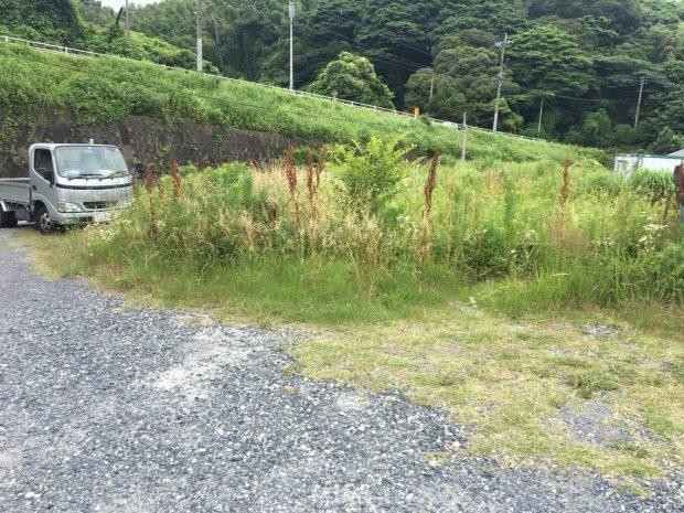 100坪ほどの広い土地に生い茂った草をきれいに刈り取りました!