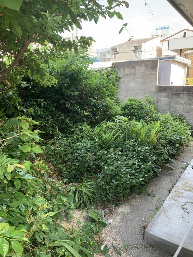 【福岡市西区】庭木の伐採と草刈のご依頼 お客様の声