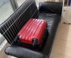 【福岡市博多区】ソファーとペット用品の回収 お客様の声