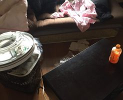 【福岡市博多区】洗濯機、洋タンス、マットレス回収 お客様の声