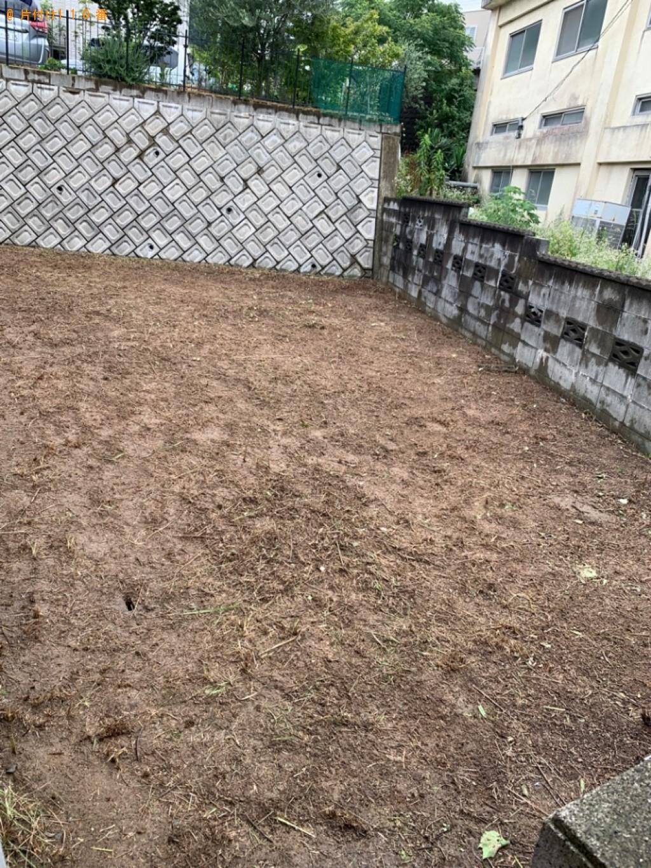 【福岡市東区】木の伐採と草刈りご依頼 お客様の声