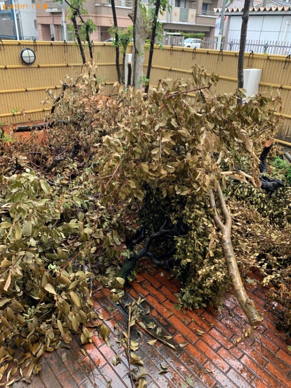 【福岡市東区】伐採した木の回収・処分ご依頼 お客様の声