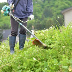 大木町で草刈りに最適な年3回の時期~楽に草刈りを終えるコツまで徹底解説